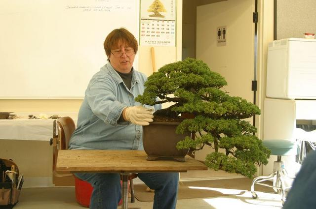 6 Kathy with restyled tree, old pot.JPG