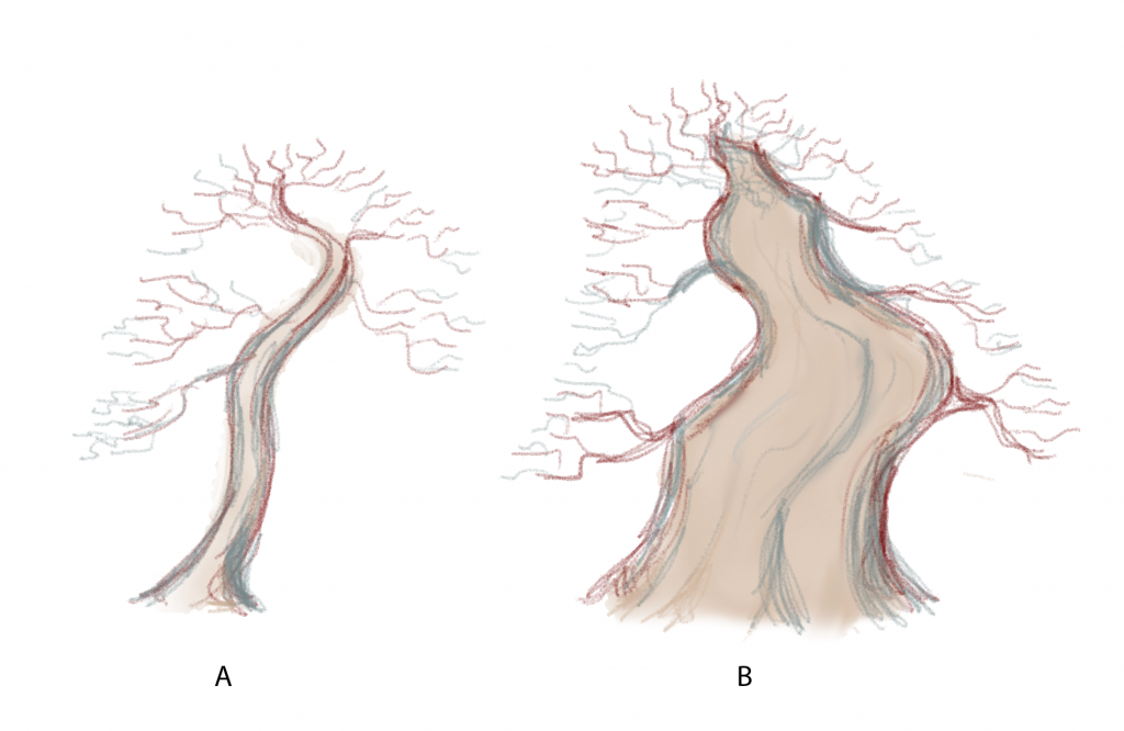 Which one of these hypothetical trees to you prefer?  There is no right answer.   Tree A has a nice elegance to it and nice branching.   Tree B is considered by many beginners to be grotesque and too cartoonish to be a nice composition.   Others consider this to be a much better tree than tree A.   While your preference may be for one or the other, almost everyone would agree that tree B would be much harder to create due to the time an attention needed to get the trunk larger and well-tapered.